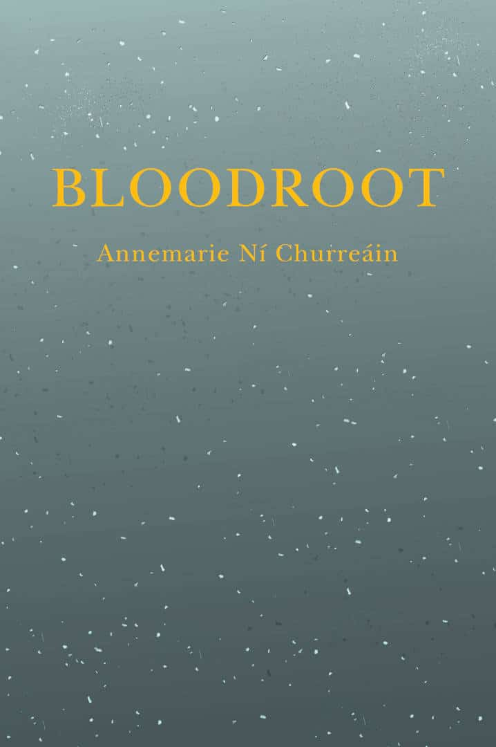 Bloodroot Short Fiction Book by Annemarie Ní Churreáin published by Doire Press