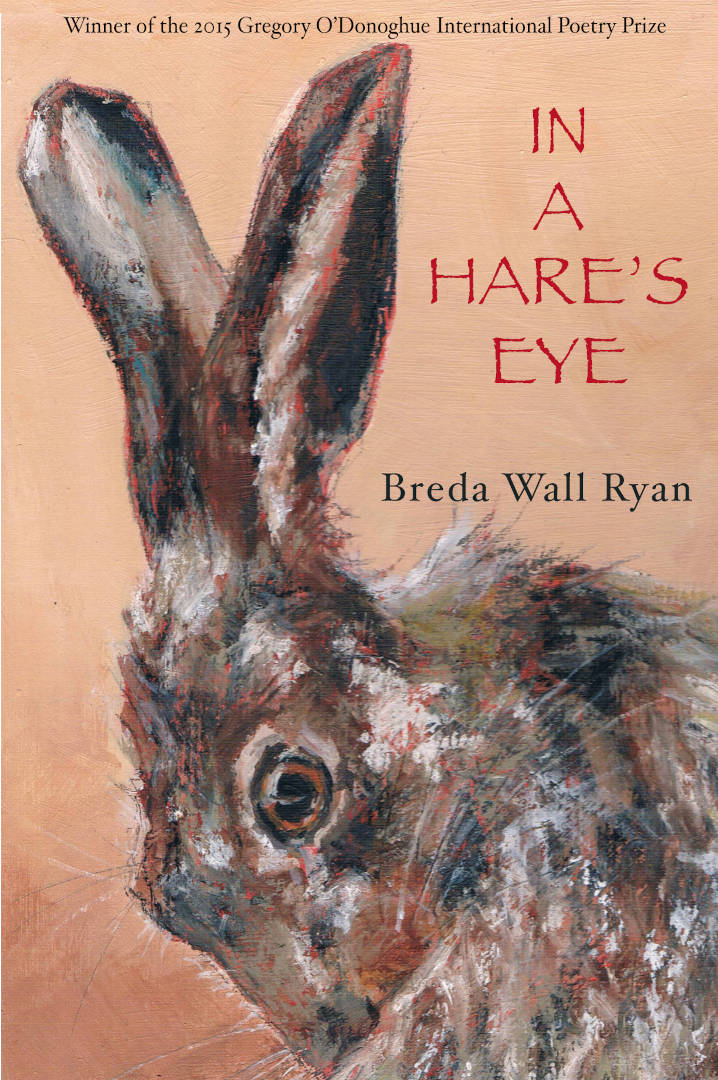 In a Hares Eye Cover 1920 Poetry Book by Breda Wall Ryan published by Doire Press