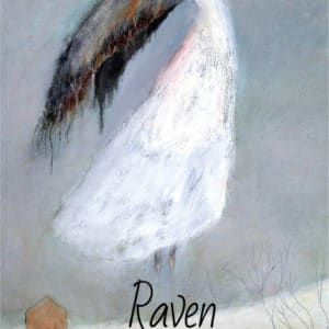 Raven Mother Poetry Book by Breda Wall Ryan published by Doire Press